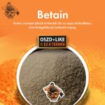 Betain 200g
